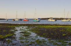 在他们的停泊的小船在鸟蛤海岛旁边在Groomsport的自然潮汐港口下来Co的,北爱尔兰和贝尔法斯特 免版税库存图片