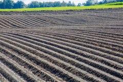 在水洪水的农业棕色泥土壤领域 库存照片