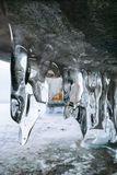在洞的冰柱 免版税库存图片