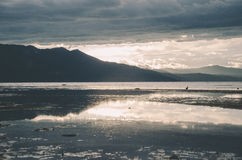 在水的反映 库存图片