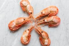 在轻的大理石背景的美丽的新鲜的虾 图库摄影