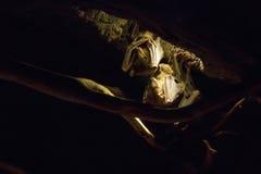 在洞的天花板的棒 免版税库存图片