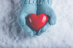在轻的小野鸭被编织的手套的妇女手在雪背景中拿着美好的光滑的红色心脏 爱,圣华伦泰概念 免版税库存照片