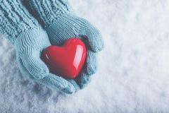 在轻的小野鸭被编织的手套的妇女手在雪背景中拿着美好的光滑的红色心脏 爱,圣华伦泰概念 免版税图库摄影