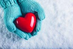 在轻的小野鸭被编织的手套的妇女手在雪背景中拿着美好的光滑的红色心脏 St华伦泰概念 库存照片