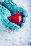 在轻的小野鸭被编织的手套的妇女手在雪背景中拿着美好的光滑的红色心脏 St华伦泰概念 库存图片