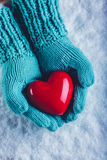 在轻的小野鸭被编织的手套的妇女手在雪背景中拿着美好的光滑的红色心脏 St华伦泰概念 免版税图库摄影