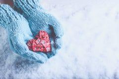 在轻的小野鸭被编织的手套的妇女手拿着在雪的美好的纠缠的葡萄酒红色心脏 爱,圣华伦泰概念 库存照片