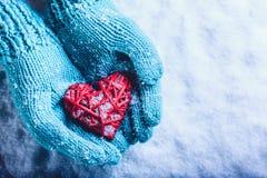 在轻的小野鸭被编织的手套的妇女手拿着在雪的美好的纠缠的葡萄酒红色心脏 St华伦泰概念 库存照片