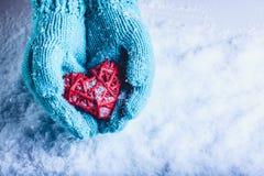 在轻的小野鸭被编织的手套的妇女手拿着在雪的美好的纠缠的葡萄酒红色心脏 St华伦泰概念 图库摄影