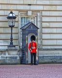 在他的岗位的女王卫兵在白金汉宫在伦敦 免版税库存照片