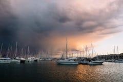 在水的很多白色游艇 在海洋水的小船 一条白色游艇 树的分支 美好的日落 A 图库摄影