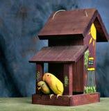 在他们的房子门廊的爱情鸟  免版税库存照片