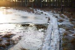 在冻水的木板走道在日落的沼泽 图库摄影