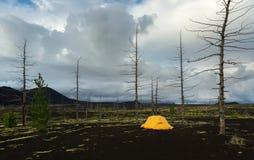 在死的木头-灰灾难发行的后果的旅游帐篷在火山的爆发时1975年扎尔巴奇克火山 免版税库存照片