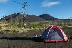 在死的木头-灰灾难发行的后果的旅游帐篷在火山的爆发时1975年扎尔巴奇克火山 库存图片