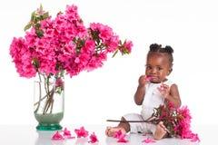 在嘴的桃红色花。 库存照片
