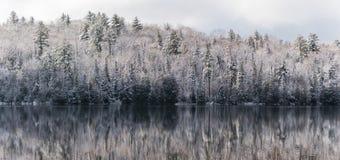 在水的海市蜃楼,静止在冬天森林里 在寂静的湖水的反射 免版税库存照片