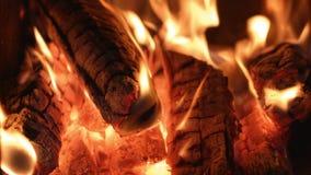 在死的炭烬的火焰 股票录像