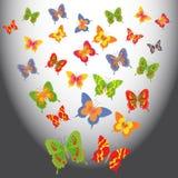 在轻的空间的动画片蝴蝶 库存图片