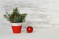 在轻的背景的圣诞节装饰 库存照片