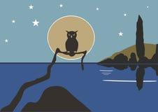 在水的葡萄酒蓝色猫头鹰与在天空的星 库存照片