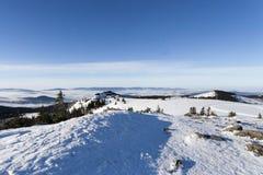 在更总的阿尔伯的冬天晴天在巴伐利亚 免版税图库摄影