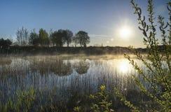 在水的雾 在la的厚实的早晨薄雾 图库摄影