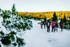 在冻结的领域的远足 库存照片