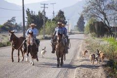 在他的马的Huasos 智利 免版税图库摄影