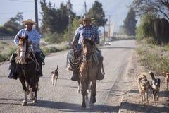 在他的马的Huasos 智利 库存图片