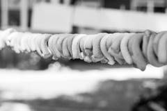 在绳索的鲜美百吉卷,户外 库存照片