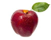 在水滴的鲜美,成熟,红色,水多的苹果与一片绿色叶子的 免版税库存图片