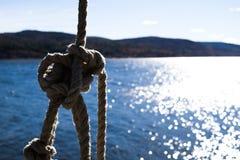 在水的绳索摇摆 免版税库存照片