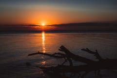 在水的黎明 库存照片