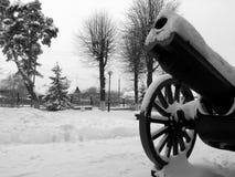 在1910的轻量级领域短程高射炮在博物馆附近 库存图片