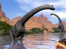 在水的3D的腕龙恐龙回报 库存照片
