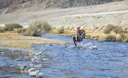 在他的hotse的蒙古游牧人老鹰猎人 免版税图库摄影
