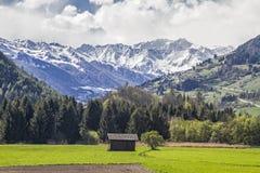 在维皮泰诺附近的风景 免版税图库摄影
