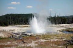 在黄石公园的美丽的破火山口 免版税图库摄影