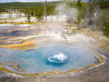 在黄石的煮沸的温泉 免版税库存照片