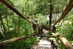 在洱码河的木桥 免版税库存照片