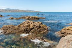 在破碎机海湾的岩石海滩在入口向惠灵顿哈勃 免版税库存照片