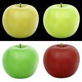 在4种颜色的现实传染媒介苹果例证 向量例证