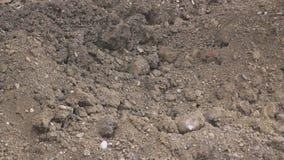 在建筑工地的挖泥机 影视素材