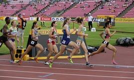 在800米的Athlets在国际田联世界U20冠军的半决赛在坦佩雷,7月的芬兰 免版税图库摄影