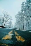 在黄线的冬天路 免版税库存图片