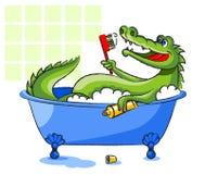 在浴缸的鳄鱼 图库摄影