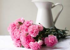 在水罐前面的桃红色康乃馨 免版税库存图片