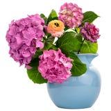 在水罐的八仙花属 免版税库存图片